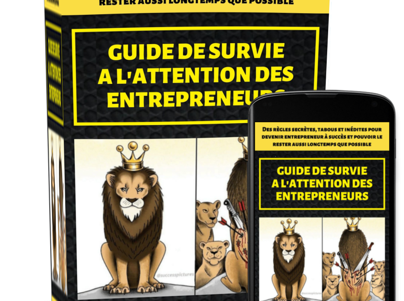 Ebook Cover Guide De Survie
